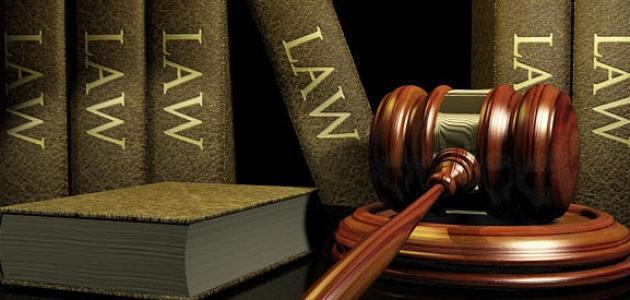 أبرز المعلومات الّتي يجب معرفتها حول دراسة القانون